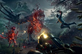 How to fix Shadow Warrior 2 Not Starting?