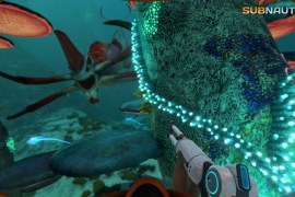 What to do when Subnautica crashes on launch?